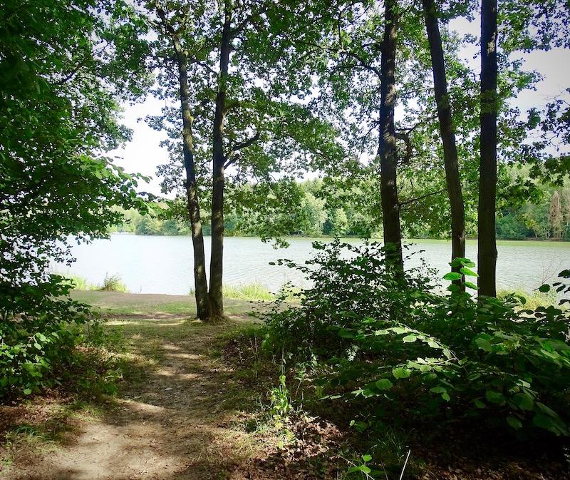 Ausbildungsstandort Ellertshäuser See Blick aufs Ufer